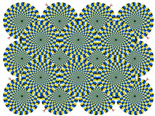 rotation.jpg (297243 bytes)