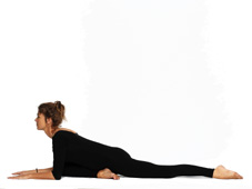 IMG 00000558 - Yoga Asanas