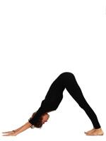 IMG 00000630 - Yoga Asanas