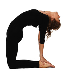 IMG 00000654 - Yoga Asanas