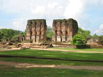 gammel tempel på srilanka med aber