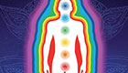 the body mirror system left - Healing