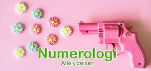 Numerologi - Alle ydelser