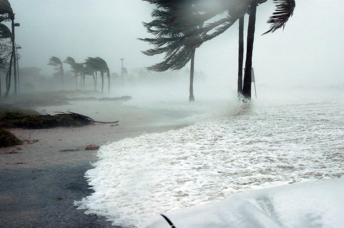 Drøm om orkan